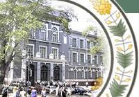 Томск - Лондон: международная образовательная программа.