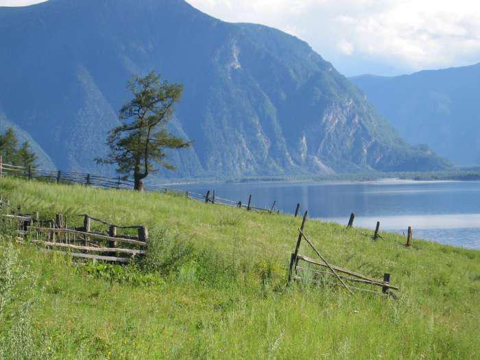 На Алтае расследуют причины ДТП, унесшего жизни 14 человек