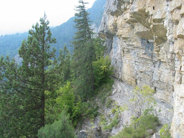 Любитель горного экстрима чуть не погиб в Севастополе