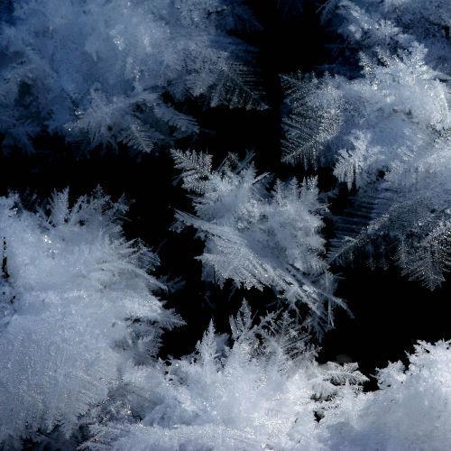 Снег - 2