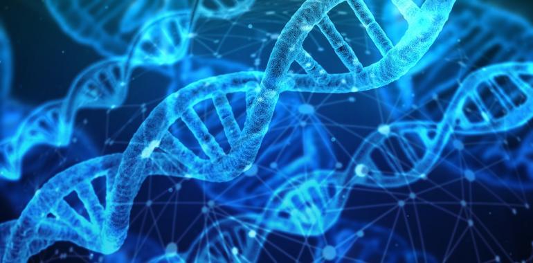 Насколько ДНК тест на диету полезен?
