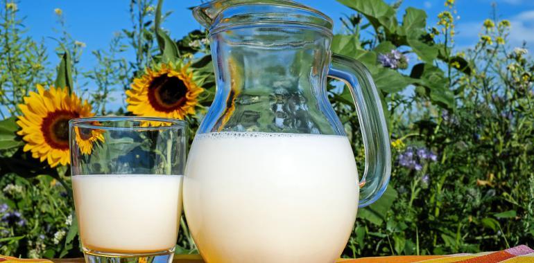 Как проверить молоко на натуральность в домашних условиях