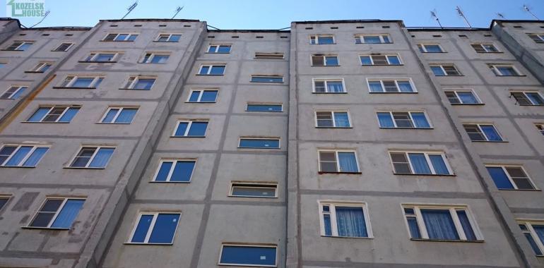 Какой дом лучше кирпичный или панельный