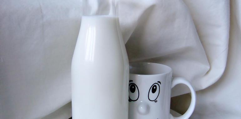 молоко оптом