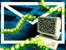 Новый вирус заражает исполняемые файлы и ворует пароли