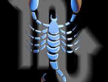 Скорпион 2006-11-18