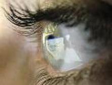 Российская интернет-аудитория растет быстрее всех в Европе
