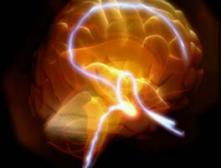 Учёные открыли молекулы памяти