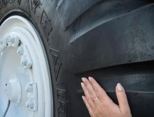 Как узнать направление шины?