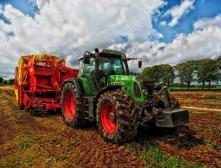 «День поля» - праздник фермеров в Киргизии